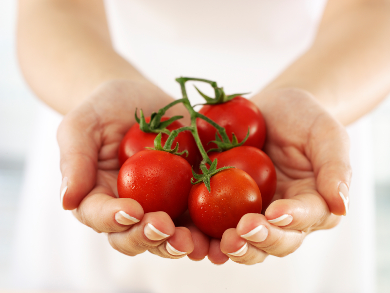 holding tomatoes Small